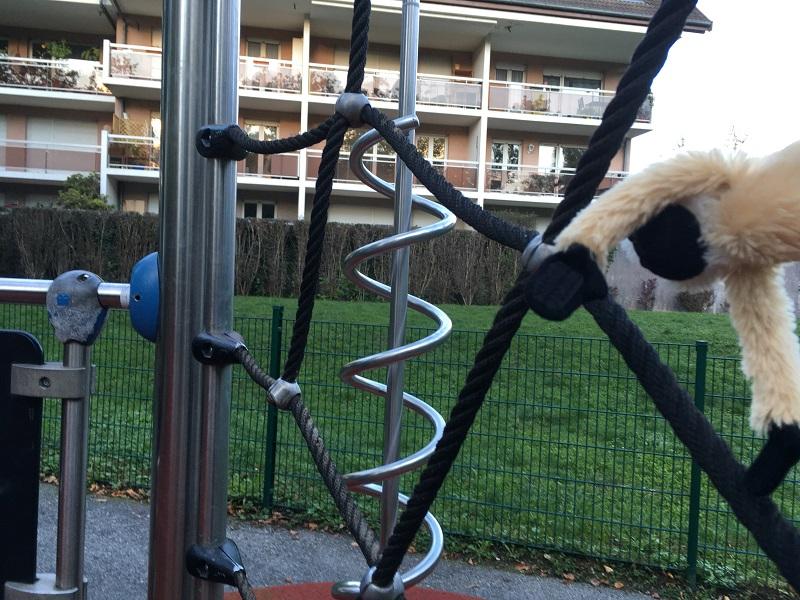 El mono amazonico descubre el parque