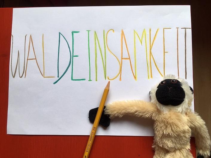 Palabra alemana Waldeinsamkeit