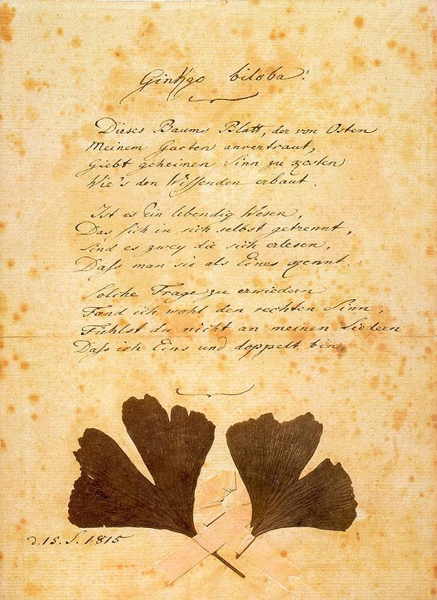 Poema Ginkgo biloba de Goethe en aleman